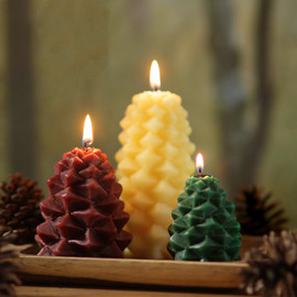 Pine Cone Candles Set of 3