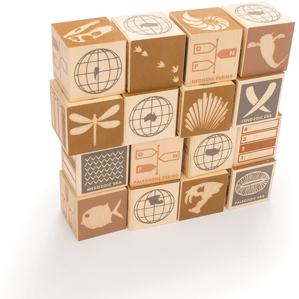 Fossil Wooden Blocks Set