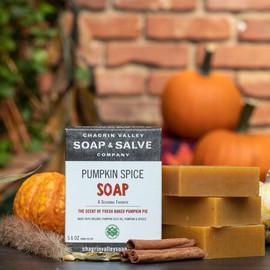 Pumpkin Spice Bar Soap