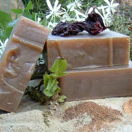 Ayurvedic Herb Shampoo Bar